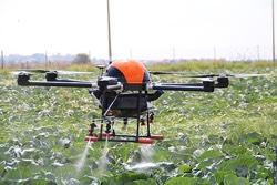 Ποτισμός καλλιεργειών με Drone. Η χρήση drones υπόσχεται αύξηση της αποδοτικότητας των καλλιεργειών μέσα από καλύτερη συλλογή πληροφοριών και βελτιστοποίηση των αποφάσεων.