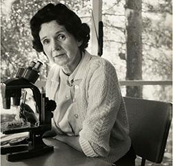 Η Ρέιτσελ Κάρσον (Rachel Carson) στο μικροσκόπιό της. Η Αμερικανίδα θαλάσσια βιολόγος, περιβαλλοντολόγος και συγγραφέας, ήταν από τους πρώτους που ανέδειξαν τον αρνητικό αντίκτυπο της αλόγιστης χρήσης των φυτοφαρμάκων. Μέσα από τα βιβλία της, με σημαντικότερο τη Σιωπηλή Άνοιξη, θεωρείται ότι έδωσε ώθηση στην ανάπτυξη του παγκόσμιου περιβαλλοντικού κινήματος