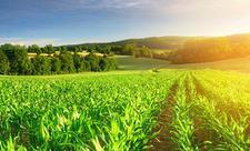 δωρεάν online dating για τους αγρότες
